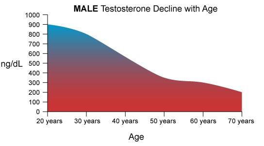 andropavza_upad_testosterona