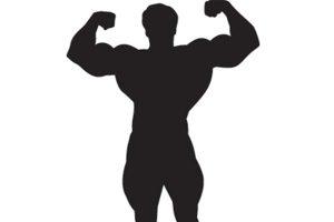 Testosteron glavni moški hormon